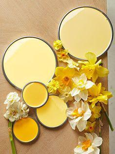 colori yoga studio giallo chiaro