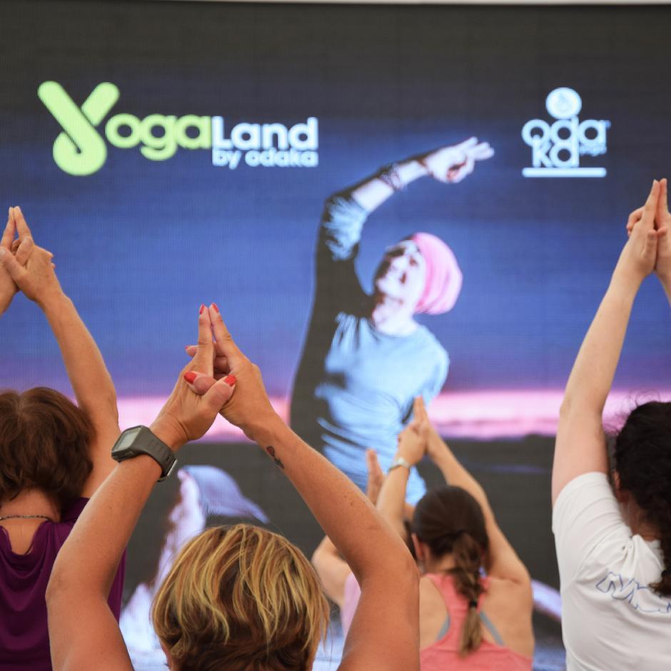 odaka yoga 2019